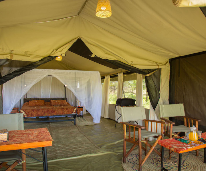 ThornTree Camp Serengeti