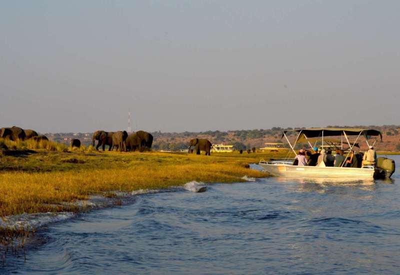 Rivertour auf dem Chobe River